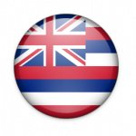 ハワイ州旗 大きさ色々