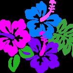ハワイアンなハイビスカス画像大量18点