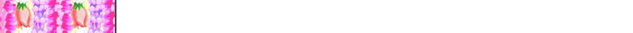 メールにも使えるハワイアンボーダー画像-2 追加12点