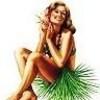Hawaiian Hula Girl Pin-Up 7点