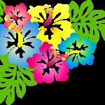 ハワイの州花 ハイビスカスのクリップアート 90種類